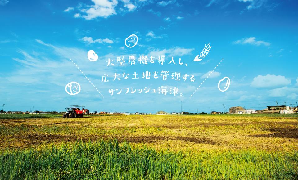 大型農機を導入し、広大な土地を管理するサンフレッシュ海津。