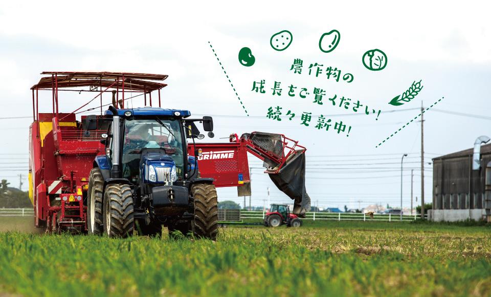 農作物の成長をご覧ください!続々更新中!