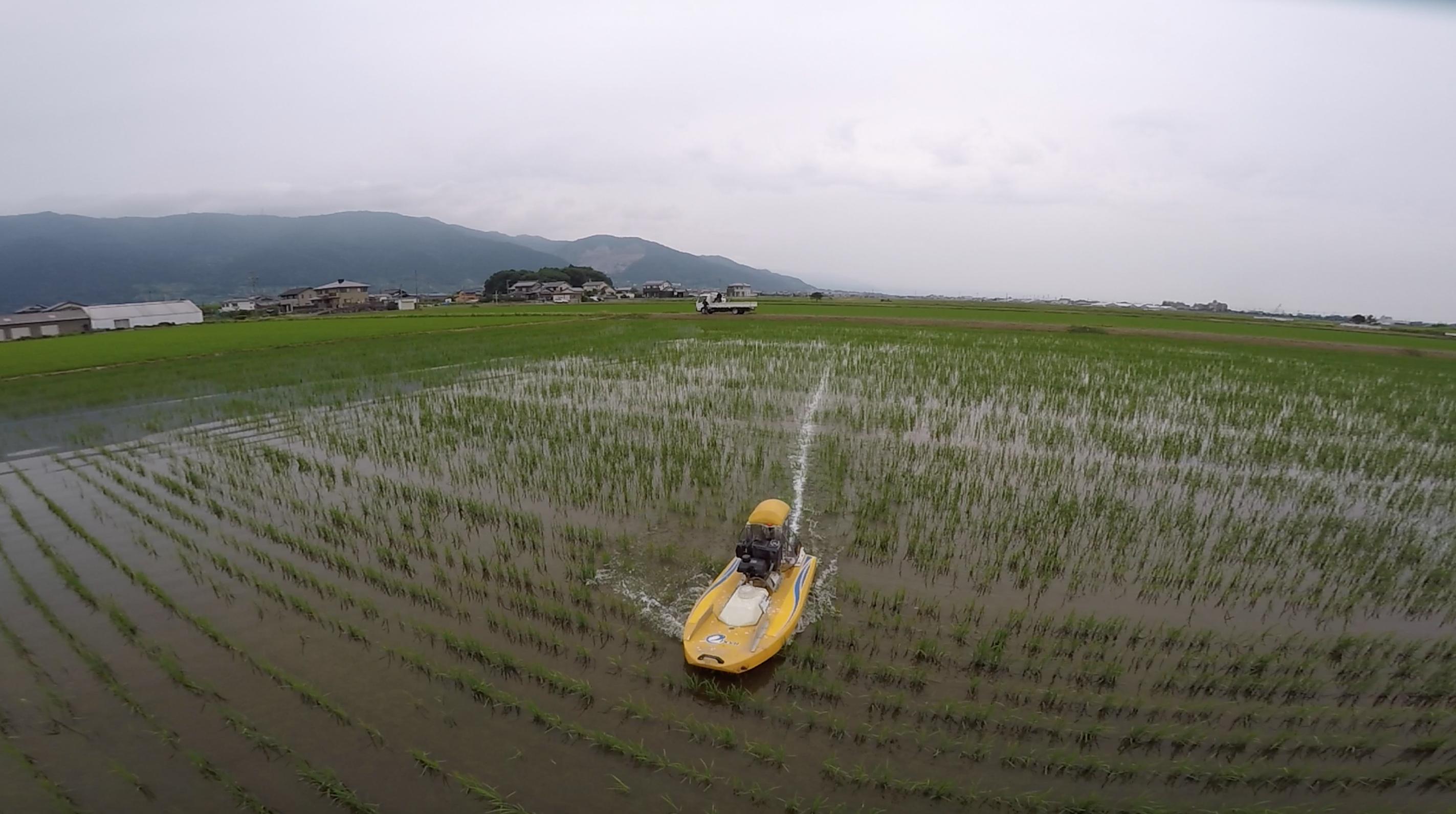 ラジコンボートによる除草剤散布